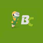 Партнерская программа BlogoCash